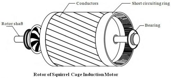Squirrel Cage Rotor Three Phase Induction Motor