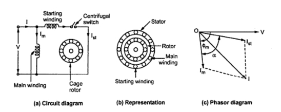 Electrical Wiring Harness Interview Questions : Split phase motor schematic everything about wiring